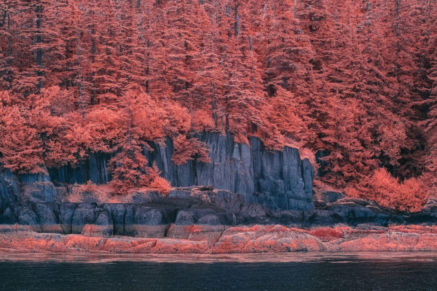 Alaska in infrarood - Bradley G Munkowitz