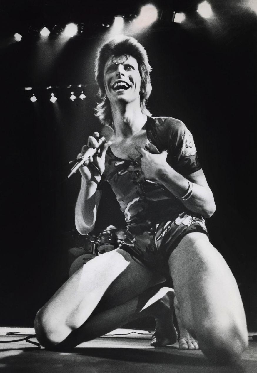 Expositie Gijsbert Hanekroot - David Bowie
