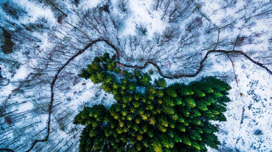 De beste dronefoto's ter wereld