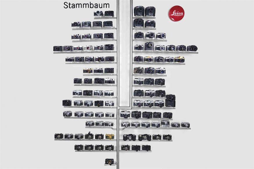 Leica stamboom