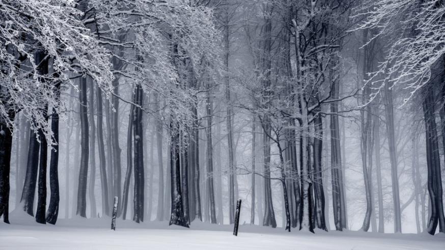 Winter Zwart-wit