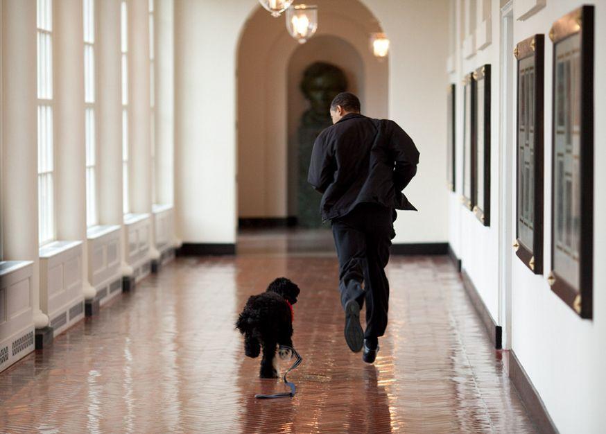 2 miljoen foto's van Barack Obama in 8 jaar