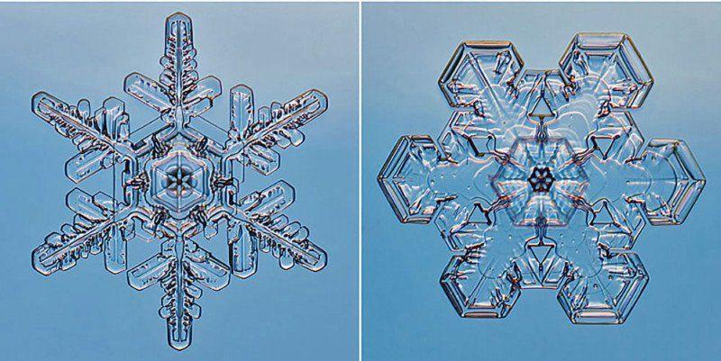 Steve Gettle fotografeerde sneeuwvlokken