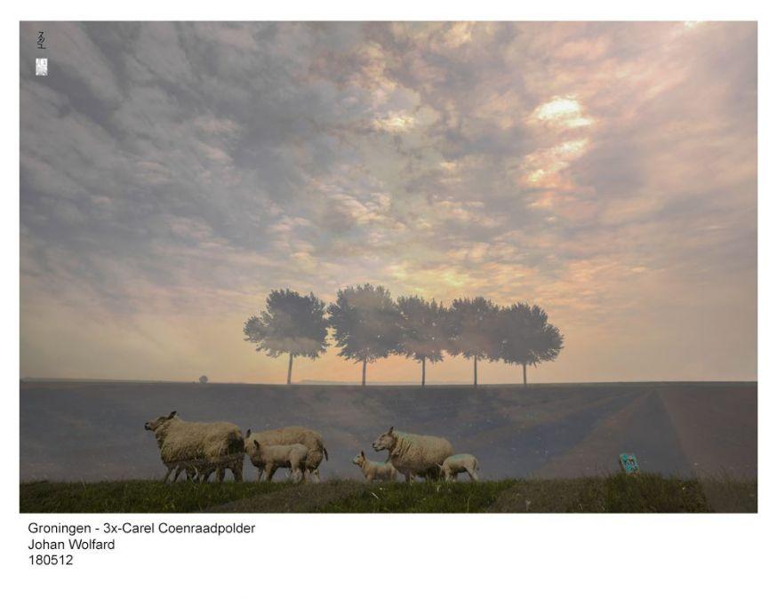 weekwinnaar jan wolfard dubbele belichting fotowedstrijd