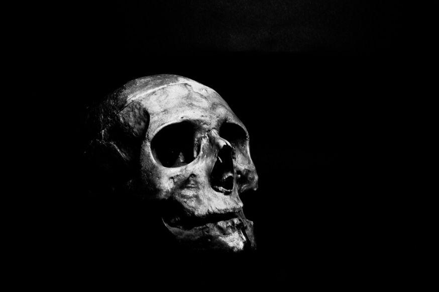 kijktip, Last Days, Lieve Blancquaert, dood, programma, fotograaf