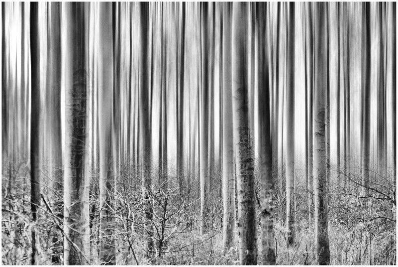 Fotowedstrijd Winter in zwart-wit