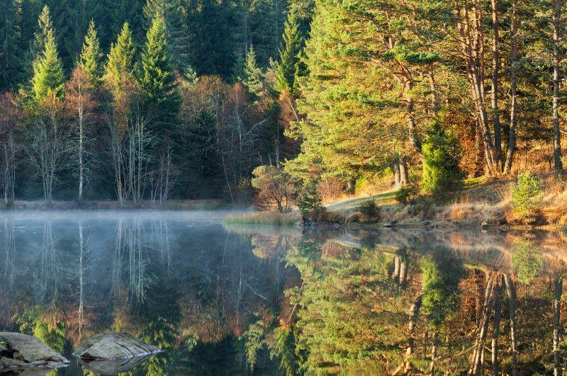 Herfst in Auvergne