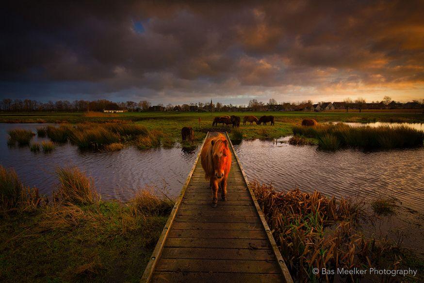 landschap door Bas Meelker