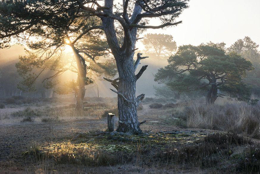 natuurfotografie locaties