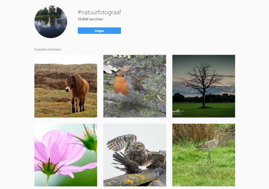 Instagram inzetten voor meer klanten natuurfotografie
