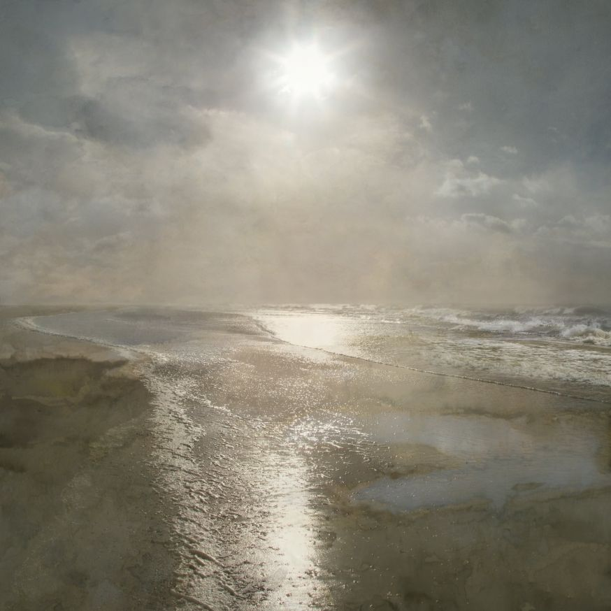 Saskia Boelsums - Landscape #44 - Courtesy Eduard Planting Gallery