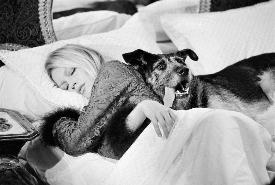 Terry O'Neill - Brigitte Bardot, 1970 - Courtesy Eduard Planting Gallery.