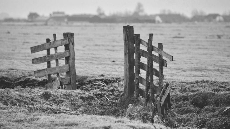 weekopdracht polder polderlandschap