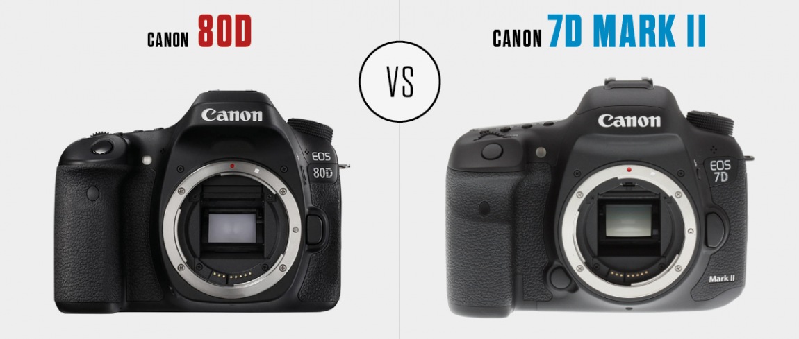 Canon EOS 7D Mark II vs. Canon EOS 80D | DIGIFOTO Pro